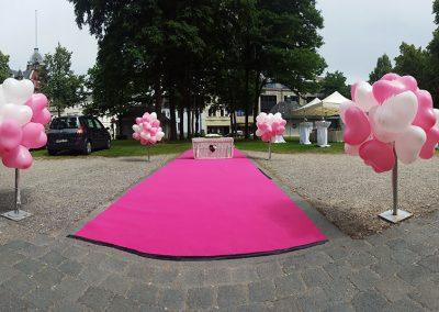 ballons-luftballons-osnabrueck-muenster-008
