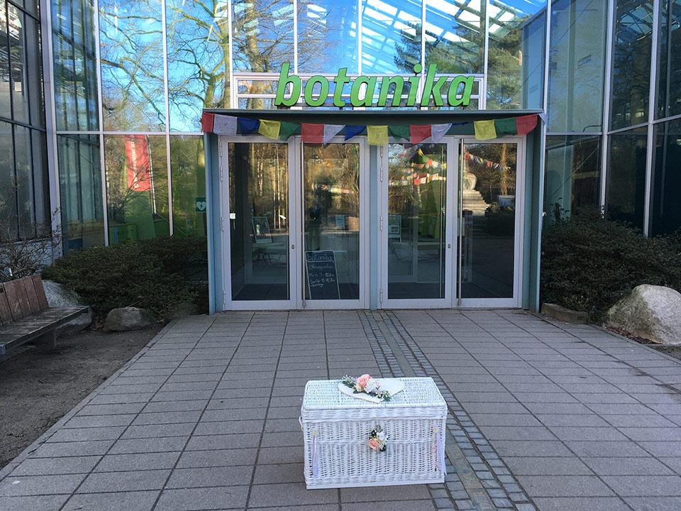 freier-Trauredner-weisse-Tauben-Ballone-Sektempfang-1